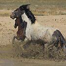 Dashing Through The Mud by Gene Praag