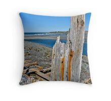 Salmon River Beach II Throw Pillow