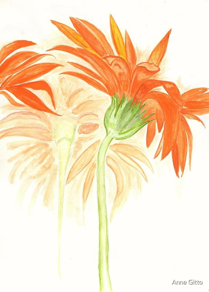Orange Passion Flowers by Anne Gitto