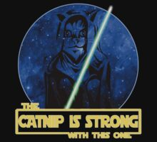 Catnip Is Strong With This One by mannart