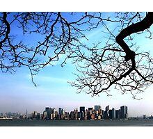 Manhattan from Liberty Island Photographic Print