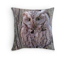 Eastern Screech Owl Throw Pillow