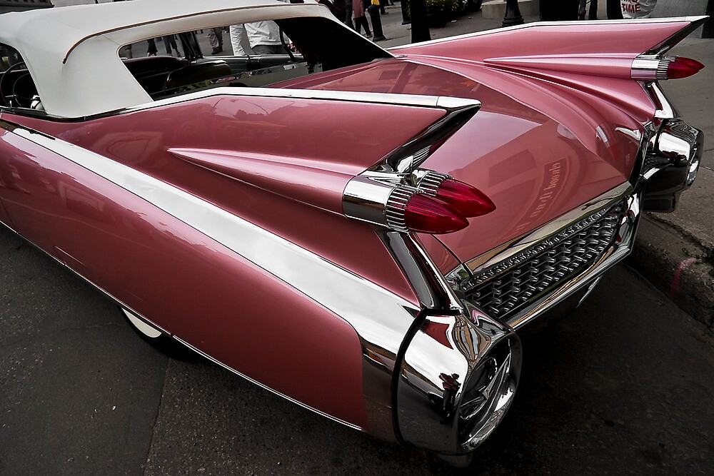 Tailfins by Davin Andrie