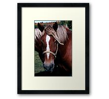 born in america Framed Print