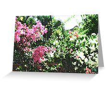 Bunches of Color (Brush Strokes) Greeting Card