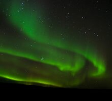 Northern Lights of Alberta Canada by Don Arsenault