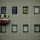 Dogs by Andrew & Mariya  Rovenko