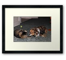 Do you want to play? I brought my toys. Framed Print