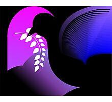 Digital painting of pigeon Photographic Print