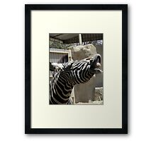 Who said animals dont have a sense of humor ? Framed Print