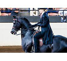 Arabian Show Horse Photographic Print