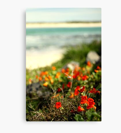 """""""If you can dream it, you can do it. Always remember that this whole thing was started with a dream and a mouse."""" – Walt Disney Canvas Print"""