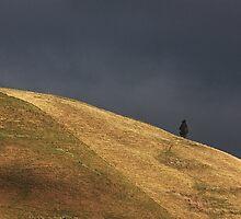 Dark sky shoulder by Duncan Cunningham