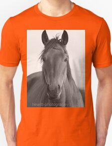 horse drawn! T-Shirt
