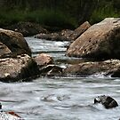 Adirondack Stream by Raider6569