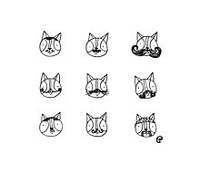 Catstache Photographic Print
