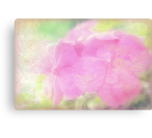 Enchanted garden 2 Canvas Print