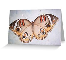 Butterfly Watercolour Painting Greeting Card