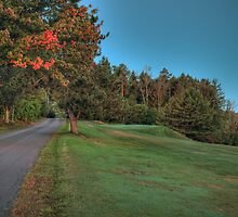 First Sign of Autumn by Aaron Campbell