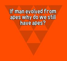 If man evolved from apes why do we still have apes? by margdbrown