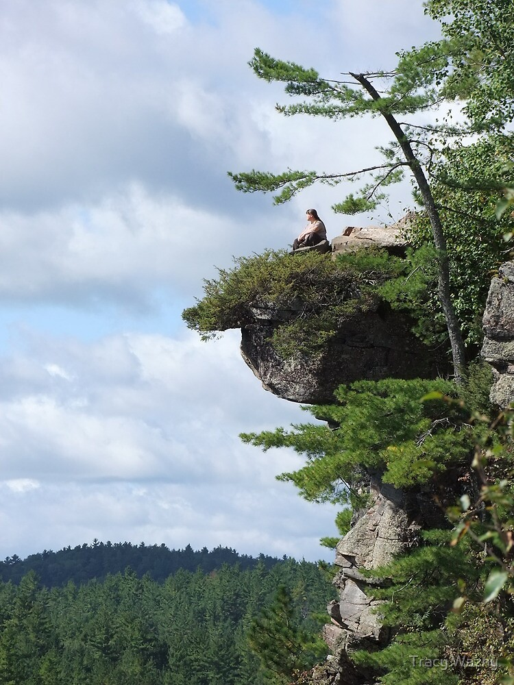 Living On The Edge! by Tracy Wazny
