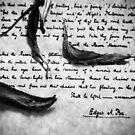 Signed, Edgar A. Poe by Erin  Sadler
