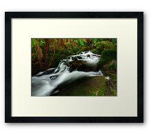 Cement Creek #1 Framed Print