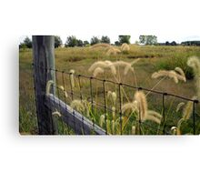 Country Charm Canvas Print