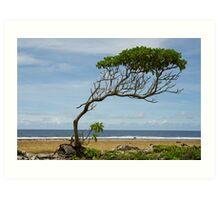 Lone Tree, Jaluit Atoll Art Print