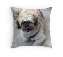Can You See My Eyes? Throw Pillow