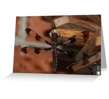 MR. DRAGONFLY Greeting Card