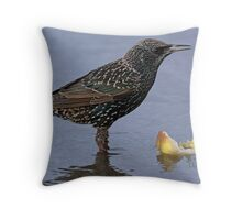 portrait of a starling Throw Pillow