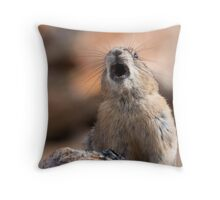 Territorial Throw Pillow