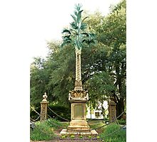 Palmetto Regiment Monument  Photographic Print