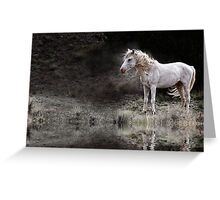 Mustang in the Wind Greeting Card