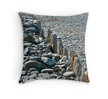 Salmon River Beach III Throw Pillow