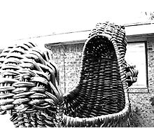 Giant Wicker Squirrel Attacks House Photographic Print