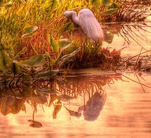Dawn Mannington Meadows, It's Going to be a Great Day by Kim McClain Gregal