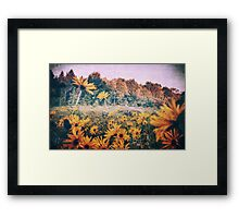 Yellow Flowers At Sunrise Framed Print