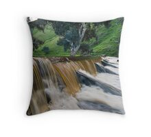 Marne River ford Throw Pillow