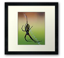 A Noiseless Patient Spider Framed Print