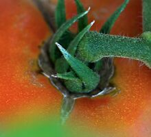Almost Ripe by HumbleLiving