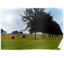 The Green Green Grass Of Home Poster
