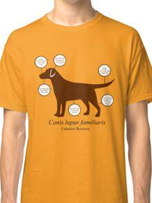 Anatomy of a Labrador Retriever Classic T-Shirt
