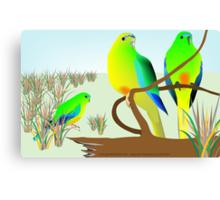 Orange Bellied Parrots Canvas Print