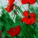Poppies in the Wind by Angela Gannicott