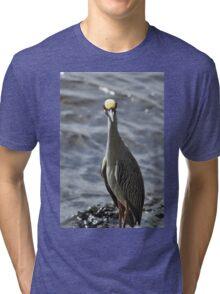 Night Heron, As Is Tri-blend T-Shirt