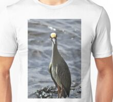 Night Heron, As Is Unisex T-Shirt