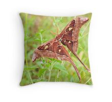 Hercules Moth Throw Pillow
