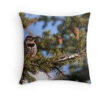 Flicker perch - Banff National Park Throw Pillow